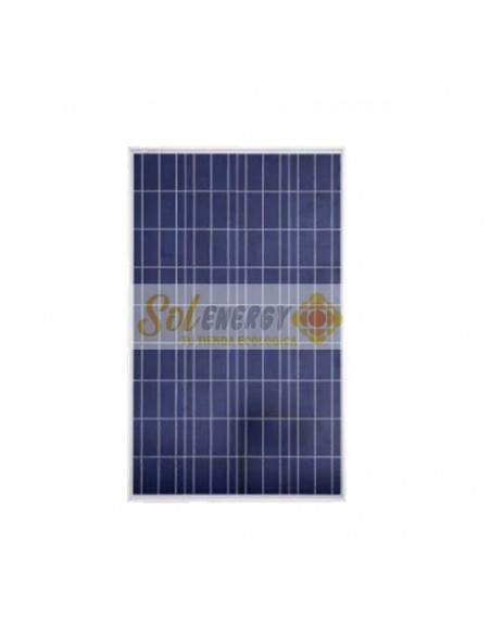 Panel Solar Fotovoltaico 100 Watts Poly 12V